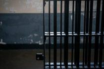 «Con el nuevo Código Penal los condenados de abuso sexual no quedarán libres hasta cumplir la totalidad de la pena»