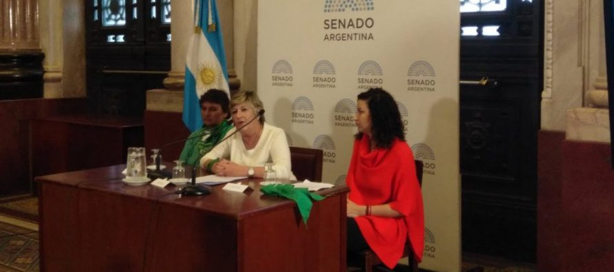 Presentaron un proyecto de ley para asistir a hijos de mujeres muertas por abortos clandestinos