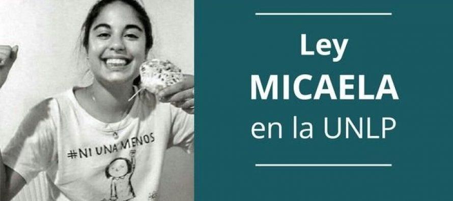 Ley Micaela. La UNLP capacita a todas sus autoridades en cuestiones de género