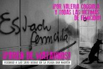 Santa Rosa y General Pico marcharán por el femicidio de Valeria Coggiola