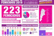 En lo que va del año, 223 femicidios en todo el país