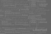 Diversidad Sexual y Derechos Humanos. Guías