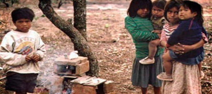 """Muerte de niños/as wichí en Salta: """"El desmonte nos quitó el hábitat y el alimento, tiene que terminar"""""""