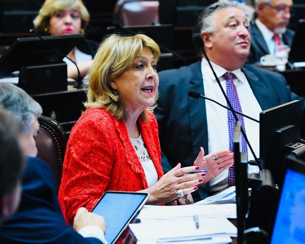 La Banca de la Mujer del Senado de la Nación manifiesta su preocupación por la liberación de presos
