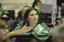 Mónica Macha sostuvo que es necesario sancionar la Ley de Obstétricas