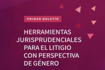 Feminismos y justicia penal. Herramientasjurisprudenciales para el litigiocon perspectivade género