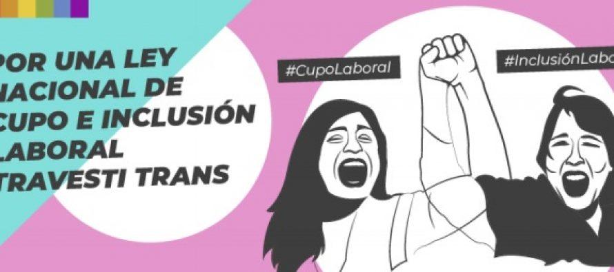 Acordaron unificar proyectos para que sea realidad el «Cupo e Inclusión Laboral Trans»