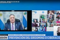 Grooming y Ciberacoso: Lovera celebró la media sanción en el Senado