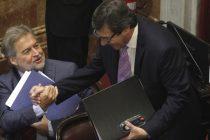 Un grupo de senadores celestes garantizaría la ley del aborto si se ciñe a la despenalización