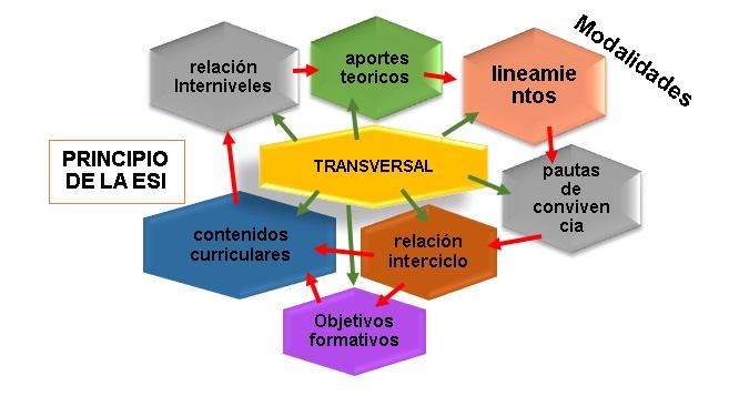 La importancia de lo transversal